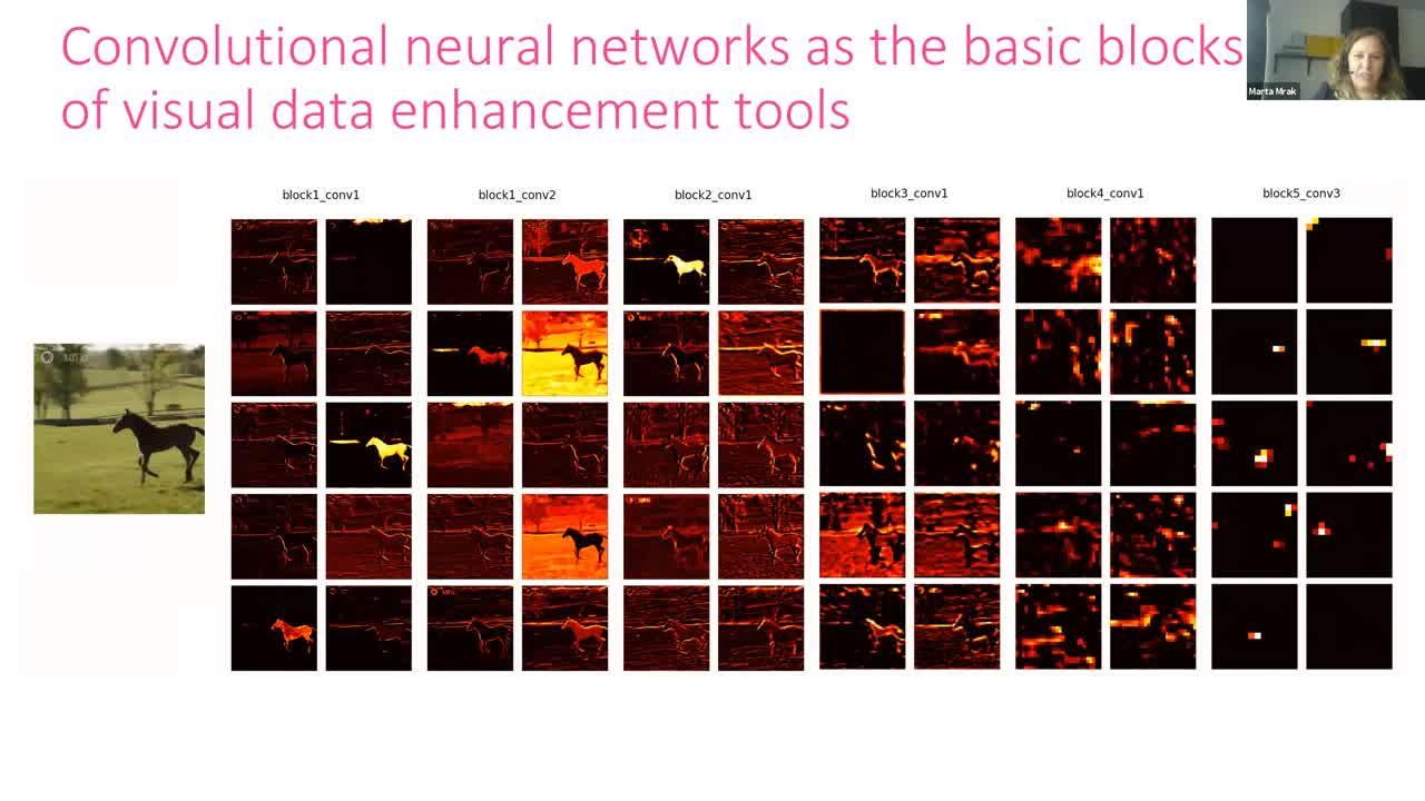 Visual Data Enhancement